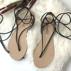 NEW Splendid Candee wraparound lace flat up sandal